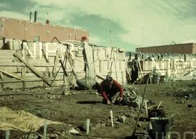 NIPR_000016.jpg