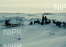 NIPR_000035.jpg