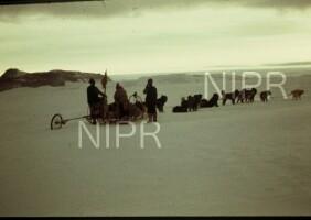 NIPR_000038.jpg