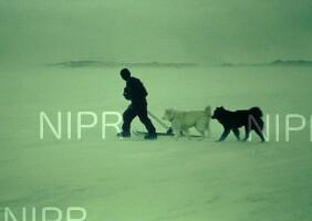 NIPR_000089.jpg