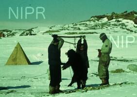 NIPR_000118.jpg