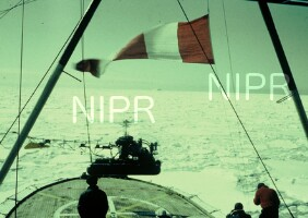 NIPR_000161.jpg