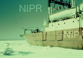 NIPR_000162.jpg