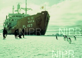 NIPR_000167.jpg
