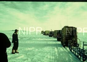 NIPR_000175.jpg