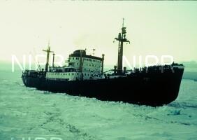 NIPR_000212.jpg