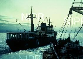NIPR_000214.jpg