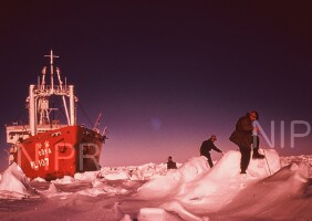 NIPR_000221.jpg