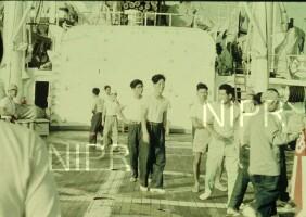 NIPR_000223.jpg