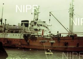 NIPR_000234.jpg