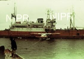 NIPR_000236.jpg