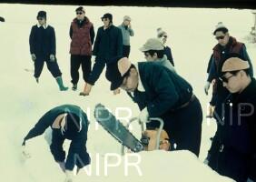 NIPR_000252.jpg