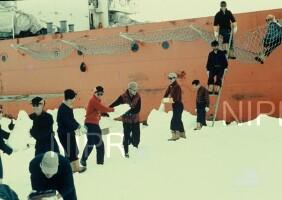 NIPR_000254.jpg