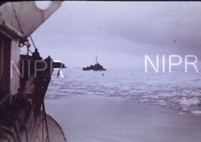 NIPR_000261.jpg