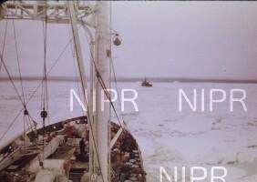 NIPR_000266.jpg