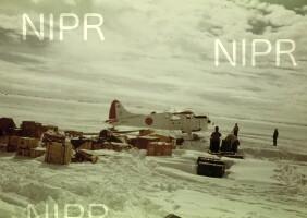 NIPR_000287.jpg