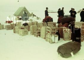NIPR_000288.jpg