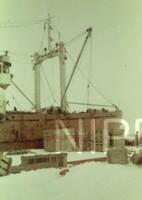 NIPR_000291.jpg