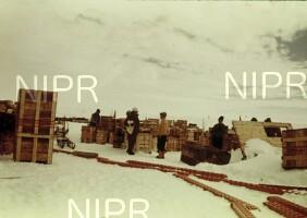 NIPR_000295.jpg