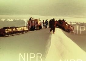 NIPR_000311.jpg