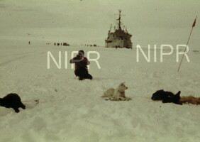 NIPR_000319.jpg