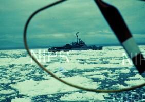 NIPR_000345.jpg