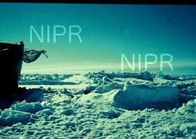 NIPR_000429.jpg
