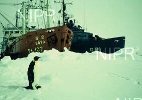 NIPR_000438.jpg