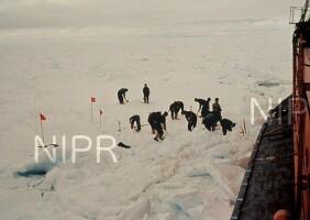 NIPR_000487.jpg