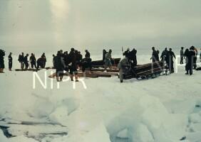 NIPR_000494.jpg