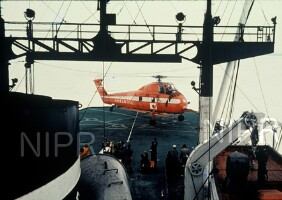 NIPR_000502.jpg