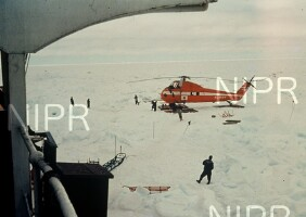 NIPR_000515.jpg