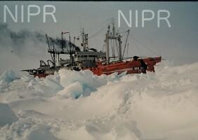 NIPR_000516.jpg
