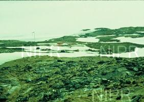 NIPR_000532.jpg