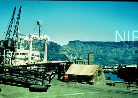 NIPR_000549.jpg