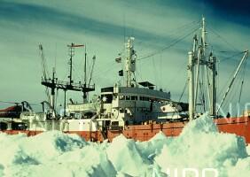 NIPR_000566.jpg