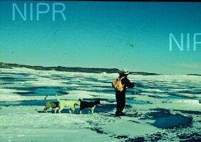 NIPR_000618.jpg