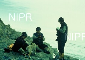 NIPR_000624.jpg