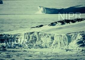 NIPR_000628.jpg