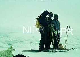 NIPR_000634.jpg