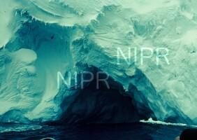 NIPR_000681.jpg