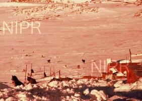 NIPR_000724.jpg
