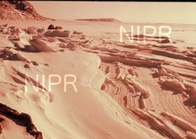NIPR_000772.jpg