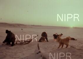 NIPR_000812.jpg
