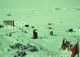 NIPR_000816.jpg