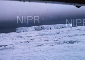 NIPR_000855.jpg