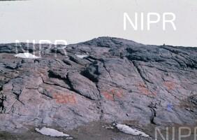 NIPR_000863.jpg