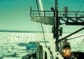 NIPR_000915.jpg