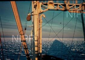 NIPR_000988.jpg