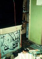 NIPR_001040.jpg